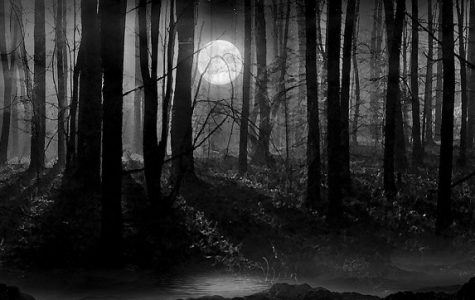 Ghouls at School: Haunted Woods Comes to Tindall