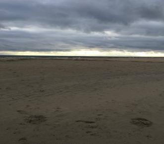 Marine Science Visits Sandy Hook