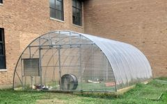 Insider's Info on North's New Greenhouse Project