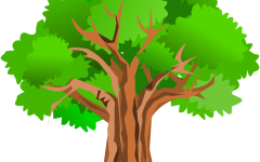 Tree Trouble: Getting to The Root of The Problem