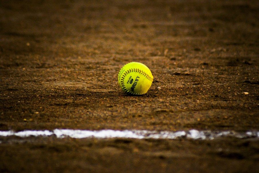 2019 Lady Lions Softball Preview