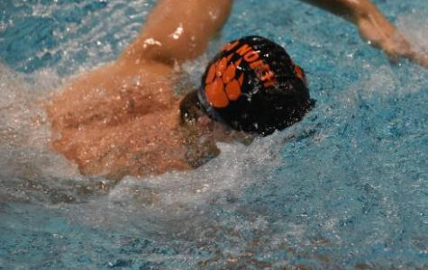 Middletown North Swimmers Hit the Pool